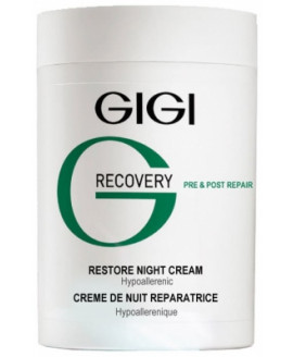 GIGI RECOVERY Restore Night...